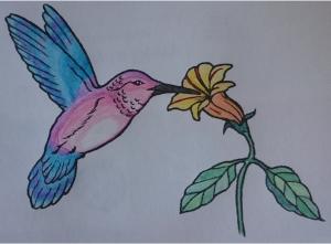 oiseau-1112-821